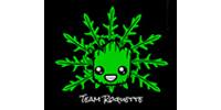 Team Roquette